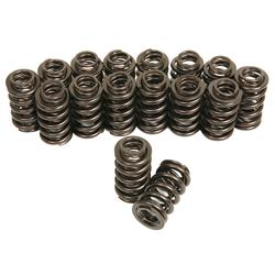 Trick Flow Specialties TFS-16891-16 - Trick Flow® by PAC Racing Dual Valve Springs