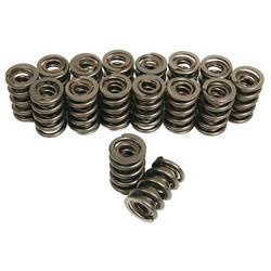 Trick Flow Specialties TFS-16324-16 - Trick Flow® by PAC Racing Dual Valve Springs