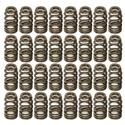 Click here for more information about Trick Flow Specialties TFS-16123-32 - Trick Flow® by PAC Racing Beehive Valve Springs