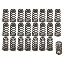 Click here for more information about Trick Flow Specialties TFS-16213-24 - Trick Flow® by PAC Racing Beehive Valve Springs